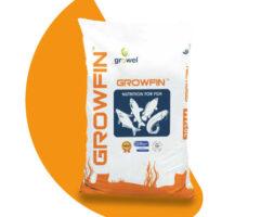 Growel : Growfin  (2.5 mm)